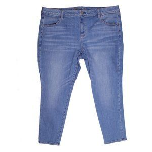 AE American Eagle Blue Jegging Jeans NWOT Plus 24